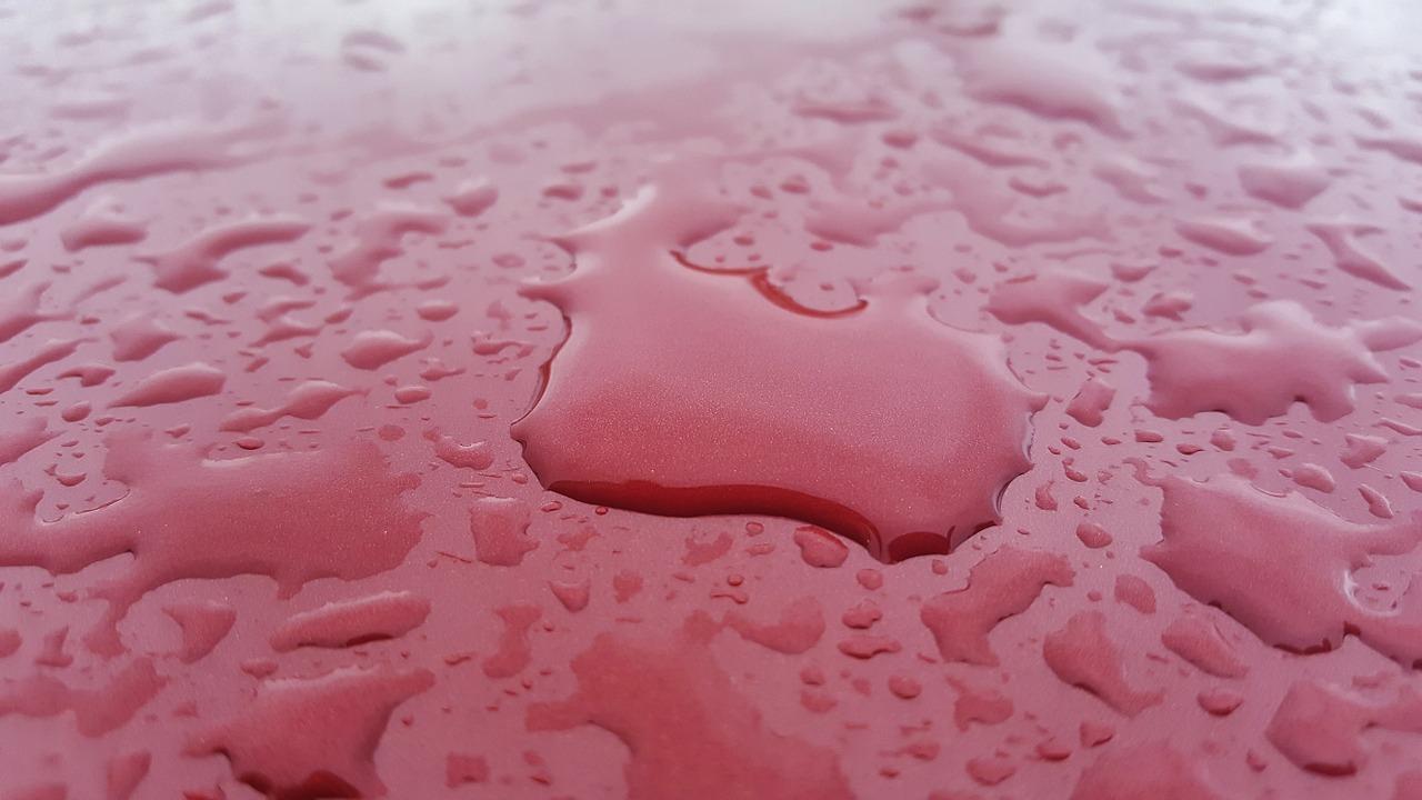 How to Safely Wash a Tesla Model 3 – The Tesla Lab